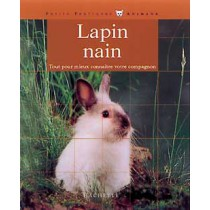 Le Lapin Nain