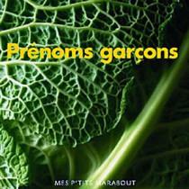 Prenoms Garcons