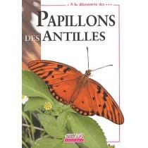 A la découverte des papillons des antilles