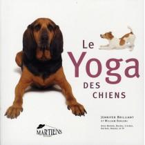 Le yoga des chiens