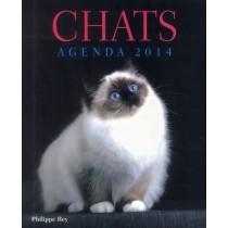 Chats - Agenda 2014
