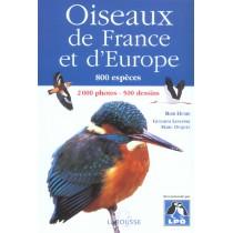 Oiseaux De France Et D'Europe, 800 Especes