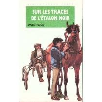 Sur Les Traces De L'Etalon Noir