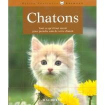 Chatons - Tout Ce Qu'Il Faut Savoir Pour Prendre Soin De Votre Chaton