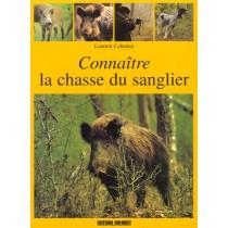 Connaitre La Chasse Du Sanglier