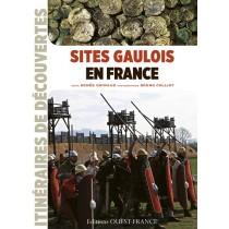 Sites gaulois en France