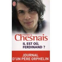 Il est où, Ferdinand ? journal d'un père orphelin