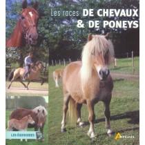 Races De Chevaux Et Poneys (Les)