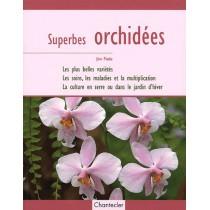 Superbes orchidées