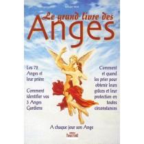 Le grand livre des anges - A chaque jour son ange
