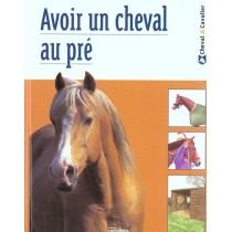 Le Cheval Au Pre